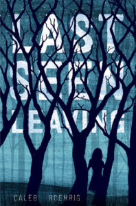 On my Radar: Top TBR Books…and a dream book (2)