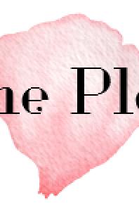 The Plan: Welcoming Erin Condren to my Life